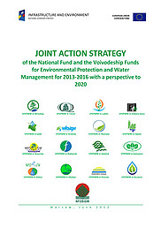 Cover of JOINT ACTION STRATEGY